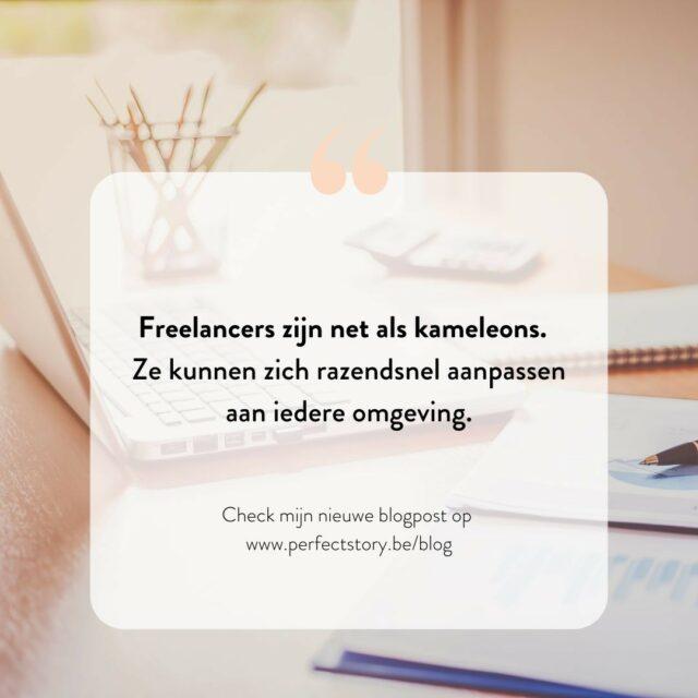 Overweeg je om een freelancer in te schakelen voor jouw communicatie- en marketingtaken? In mijn nieuwe blogpost van Perfect Story neem ik al jouw twijfels weg en geef ik alvast 4 goede redenen om het zeker te doen! Link in bio. #freelancer #freelancecontentcreator #bloggen